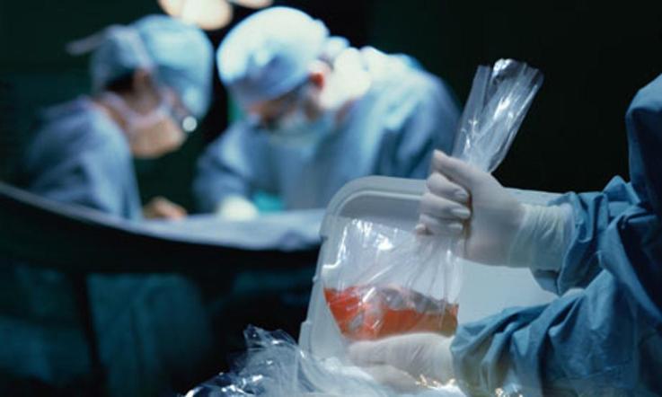 human-organ-transplant-008.jpg